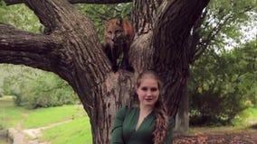 Młoda kobieta stoi blisko drzewa na którym siedzi czerwonego lisa w parku zbiory wideo