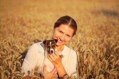 Młoda kobieta trzyma Jack Russell teriera szczeniaka na jej ręce, popołudniowy słońce zaświecał pszenicznego pole za obraz stock