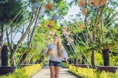 Młoda kobieta turystyczni i Wietnamscy kapelusze Podróż wokoło Wietnam c Zdjęcia Royalty Free