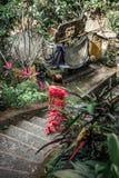 Młoda kobieta w długim czerwieni sukni odprowadzenia puszku schodki w dżungli Bali wyspa A obrazy royalty free