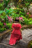 Młoda kobieta w długim czerwieni sukni odprowadzenia puszku schodki w dżungli Bali wyspa A zdjęcie royalty free