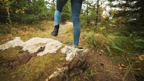 Młoda kobieta wycieczkuje up halnego skłon jest ubranym rzemiennego mountaineering inicjuje Wycieczkowicz dziewczyna na halny tre zdjęcie wideo