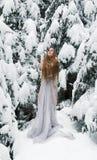 Młoda kobieta z długie włosy, z długą biel suknią w śniegu Lód marznie w zimie, patrzeje w górę i grże z ona ręki, obrazy royalty free