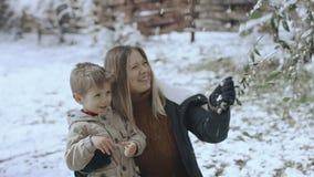 Młoda kobieta z jej małym synem trząść śnieżną gałąź w zimie park Folujący HD zbiory