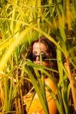 Młoda kobieta z okularami przeciwsłonecznymi w bambusa polu obraz royalty free