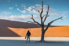Młoda męska fotograf pozycja z nieżywym drzewem w deadvlei Zdjęcia Royalty Free