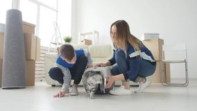 Młoda mama i syn z ich kotem ruszamy się nowy mieszkanie zdjęcie wideo