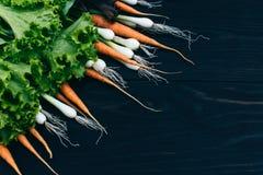 Młoda marchewka, cebula i sałatka, Gotować z świeżymi warzywami Obraz Stock