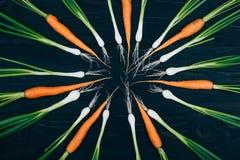 Młoda marchewka i cebula Gotować z świeżymi warzywami Zdjęcia Stock