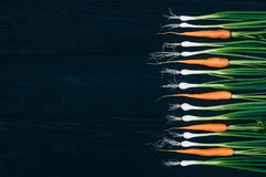 Młoda marchewka i cebula Gotować z świeżymi warzywami Zdjęcie Stock