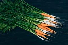 Młoda marchewka i cebula Gotować z świeżymi warzywami Obrazy Stock