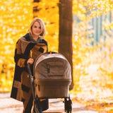 Młoda matka z spacerowiczem chodzi przez jesień parka obraz royalty free
