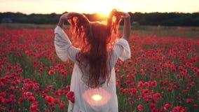 Młoda miedzianowłosa kobieta rzuca włosy w powietrze w kwiecenia polu maczki przy zmierzchem, zwolnione tempo zbiory wideo