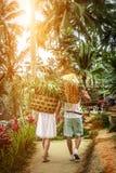 Młoda miesiąc miodowy para na ryżowych polach Bali wyspa Podróż wakacje na Bali pojęciu obrazy royalty free