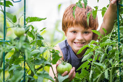 Młoda ogrodniczka Obraz Royalty Free