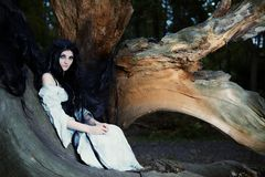 Młoda piękna czarownica z długim ciemnym włosy w korzeniu stary drzewo obraz stock