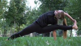 Młoda piękna dziewczyna angażująca w joga Obrazy Stock