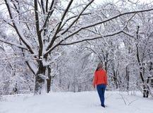 Młoda piękna dziewczyna chodzi w śnieżystym baśniowym lesie blisko gałęzistego odwiecznie starego dębu obraz stock