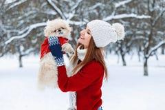 Młoda piękna dziewczyna trzyma małego szczeniaka w jego bawić się i rękach Obrazy Stock