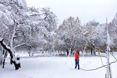 Młoda piękna kobieta chodzi w zimie w śnieżnym bajecznie miasto parku zdjęcia royalty free