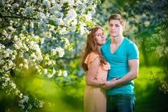 Młoda piękna para w miłości wśród jabłoni Obrazy Royalty Free