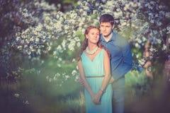 Młoda piękna para w miłości wśród jabłoni Zdjęcie Stock
