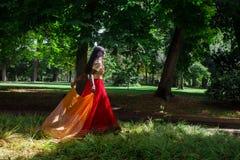 Młoda piękna tradycyjna indyjska kobieta w naturze Zdjęcia Stock