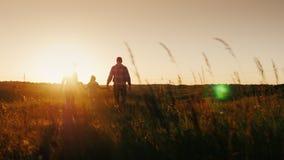 Młoda rodzina trzy ludzie iść wietrzeć zmierzch lub wschód słońca Sylwetki, tylni widok steadicam strzał zdjęcie wideo