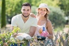 Młoda rodzina w rękawiczkach w roślina ogródzie zdjęcie stock