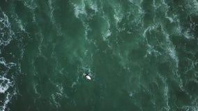 Młoda surfingowiec dziewczyna szuka dla fal zbiory wideo