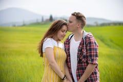Młoda szczęśliwa pary pozycja na zielonej łące Mężczyzny buziak jego dziewczyna w czole zdjęcia stock