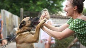 Młoda wiejska kobieta bawić się z jej łańcuszkowym psem Pies podnosi swój łapy i raduje się przy kochanką Zwierzęta domowe w zdjęcie wideo