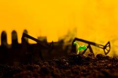Młoda zielona roślina w ziemi na tło nafcianej kołysa maszynie Obraz Royalty Free