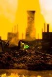 Młoda zielona roślina w ziemi na tło nafcianej kołysa maszynie Zdjęcia Royalty Free