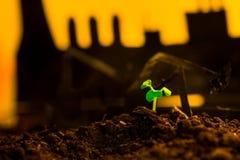 Młoda zielona roślina w ziemi na tło nafcianej kołysa maszynie Obrazy Stock
