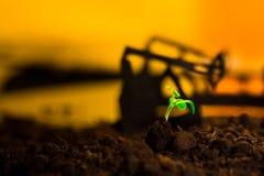 Młoda zielona roślina w ziemi na tło nafcianej kołysa maszynie Zdjęcie Royalty Free