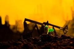 Młoda zielona roślina w ziemi na tło nafcianej kołysa maszynie Fotografia Stock