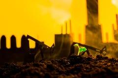 Młoda zielona roślina w ziemi na tło nafcianej kołysa maszynie Obraz Stock