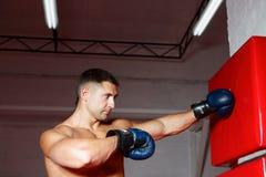młode bokser rękawiczki fotografia royalty free