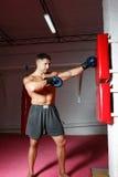 młode bokser rękawiczki obraz royalty free