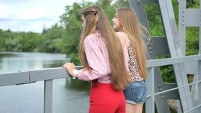 Młode dziewczyny chodzą wzdłuż mosta cieszy się zadziwiającego widok zdjęcie wideo