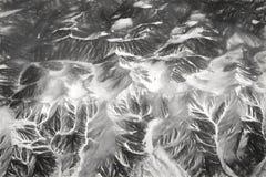 Młode góry w wiośnie Ptasia ` s oka panorama na skłonach od śniegu i szczytu backorder Fotografia Royalty Free