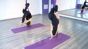 Młode kobiety ćwiczy anty spoważnienia joga w hamakach zdjęcie wideo