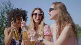 Młode kobiety clinking piwo zbiory wideo