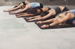 Młode kobiety w joga klasie, przyrodni tortoise pozy rozciąganie Obrazy Royalty Free