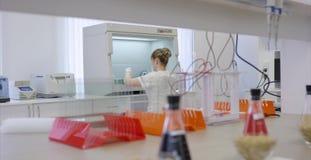 Młode naukowiec pracy w nowożytnym biologicznym lab Żeński medyczny, naukowi badacz doktorski patrzeje a lub zbiory