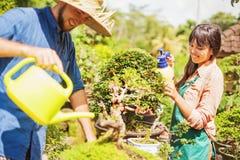 Młode ogrodniczki z bonsai zdjęcia stock