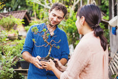 Młode ogrodniczki z bonsai obrazy royalty free