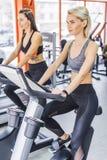 młode sportive kobiety pracujące na elliptical maszynach out obraz stock