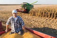 Młodego średniorolnego mienia dojrzałe kukurudze zdjęcie stock